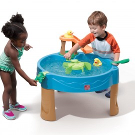 Duck Pond Water Table - Step2
