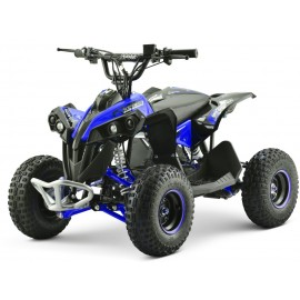 EL ATV Renegade Brushless 1200W 48V Kardan, Blå