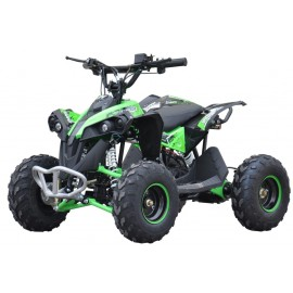 EL ATV Renegade Brushless 1200W 48V Kardan, Grøn