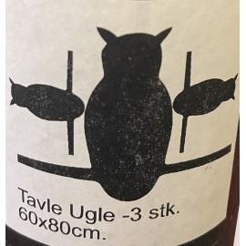 Tavle Ugle - 3 stk. - STICKERS DELUXE