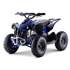 Renegade Brushless 1060W Kardan el-ATV